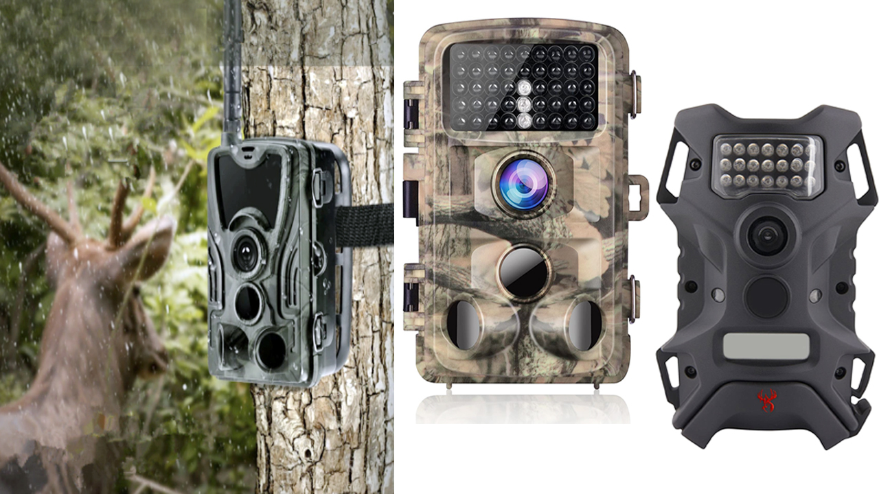 best trail camera for small animals
