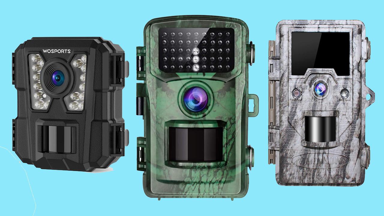 best trail camera under 50